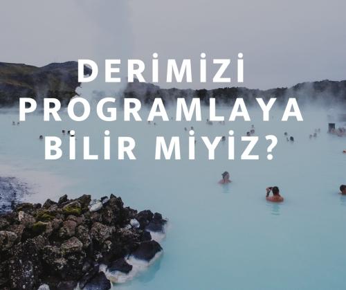 Deri Programlanabilir Mi_